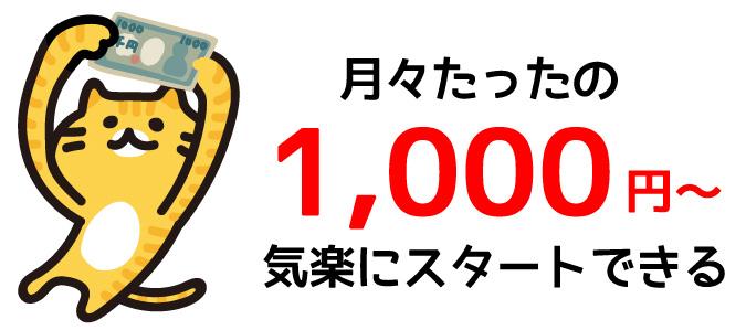 月々1000円からスタートできる